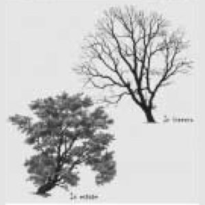 04_410_interventi-di-naturazione-e-ripristino-lungo-il-fiume-lambro
