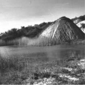 06_607_pastorizia-bioecologica-e-conservazione-della-bioiversita-nella-riserva-naturale-di-lucciola-bella_01